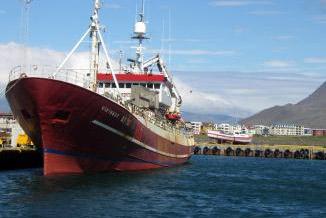 航运行业评韩进海运申请破产对本行业影响